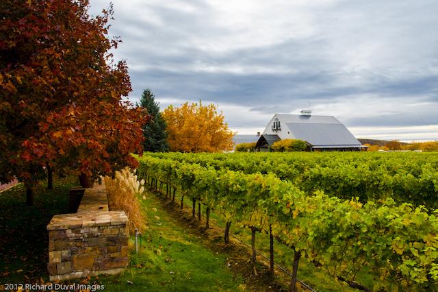 abeja inn mill creek vineyard richard duval images - Seattle businessmen buy controlling interest in Walla Walla's Abeja