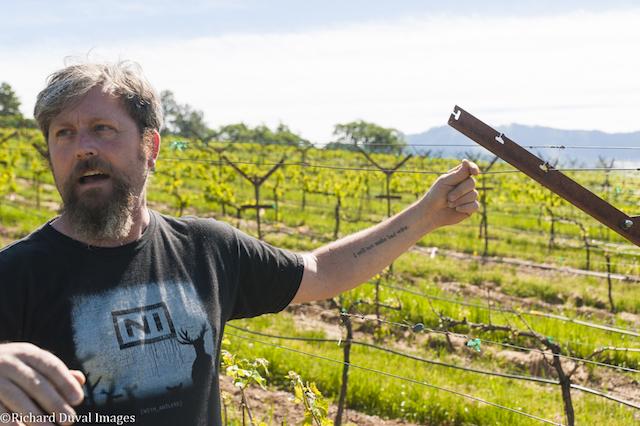 herb quady mae vineyard 5 10 17 - Team Quady sweeps superlatives at Oregon Wine Competition