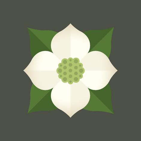 silvara-cellars-logo