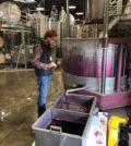 derrek vipond long shadows vintners courtesy trellis growth partners 120x134 - Walla Walla Vintners makes winemaking change