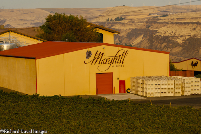 maryhill winery production facility vines richard duval images - Maryhill Winery springs into Vancouver, then Woodinville