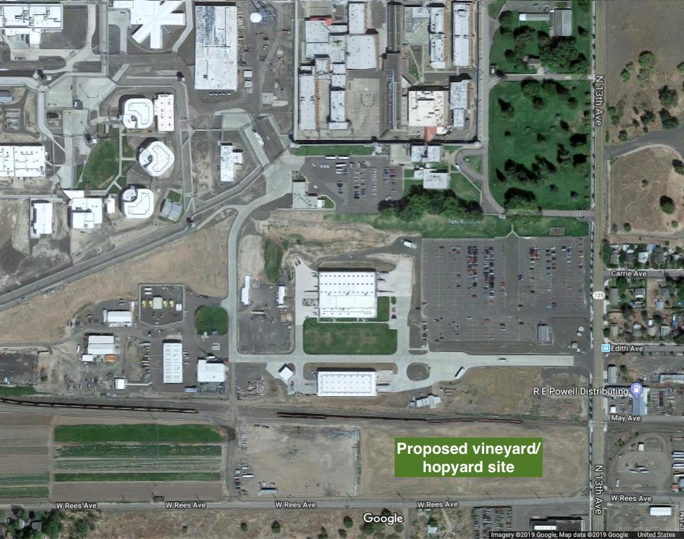 washington-state-penitentiary-vineyard-hopyard-site