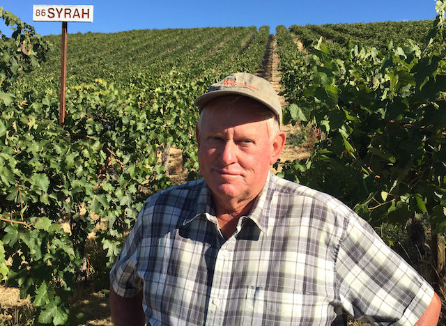 mike-sauer-red-willow-vineyard-syrah-photo