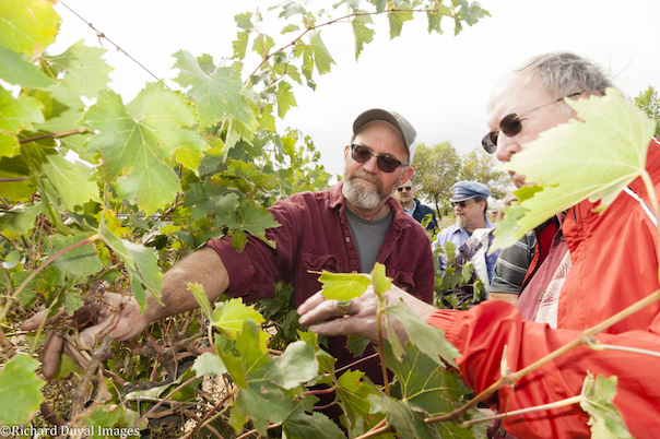 scott williams kiona vineyards tour richard duval images - Auction of Washington Wines selects 2019 honorary grower, vintner