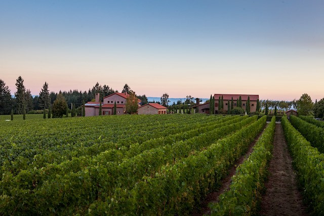 alloro vineyard estate rows - Alloro Vineyard weaves New World with Old in Chehalem Mountains