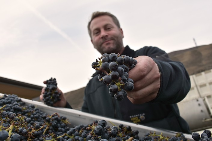richard batcheolor crush pad maryhill winery - Alexandria Nicole Cellars uses white Rhône blend to lead Great Northwest Invite
