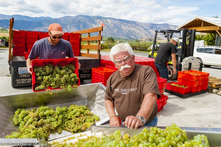 don phelps grapes richard duval images - Apples to grapes: The path to the Lake Chelan AVA