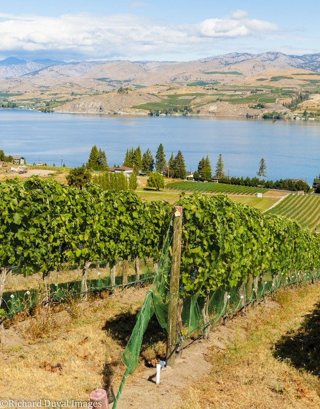 lake chelan tsillan cellars 16 richard duval images - Apples to grapes: The path to the Lake Chelan AVA