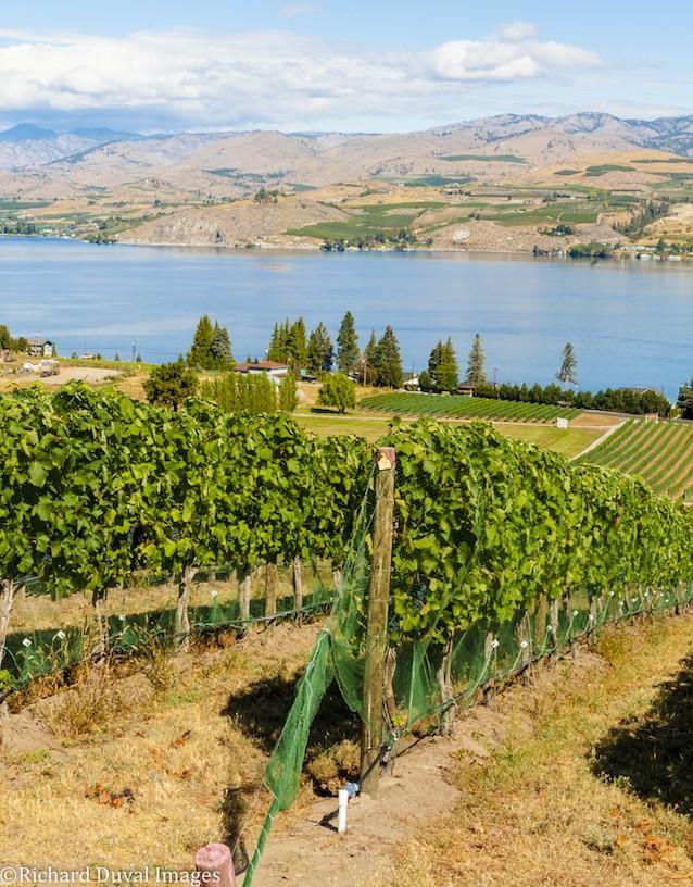 lake chelan tsillan cellars 16 richard duval images - Apples to grapes: The path to the Lake Chelan AVA