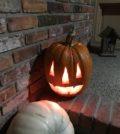 ALC CC Photo Halloween Pumpkin by Tony 120x134 - Halloween Wine Flights and Smoothies at AntoLin Cellars