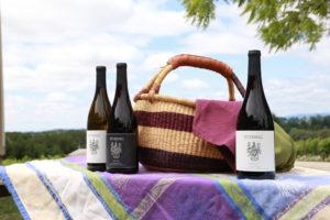 StyringPicnic2 300x200 - Styring Vineyards Wit Reserve Estate Pinot Noir Release Celebration