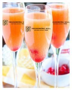 orange mimosa 241x300 - Mimosa Sunday