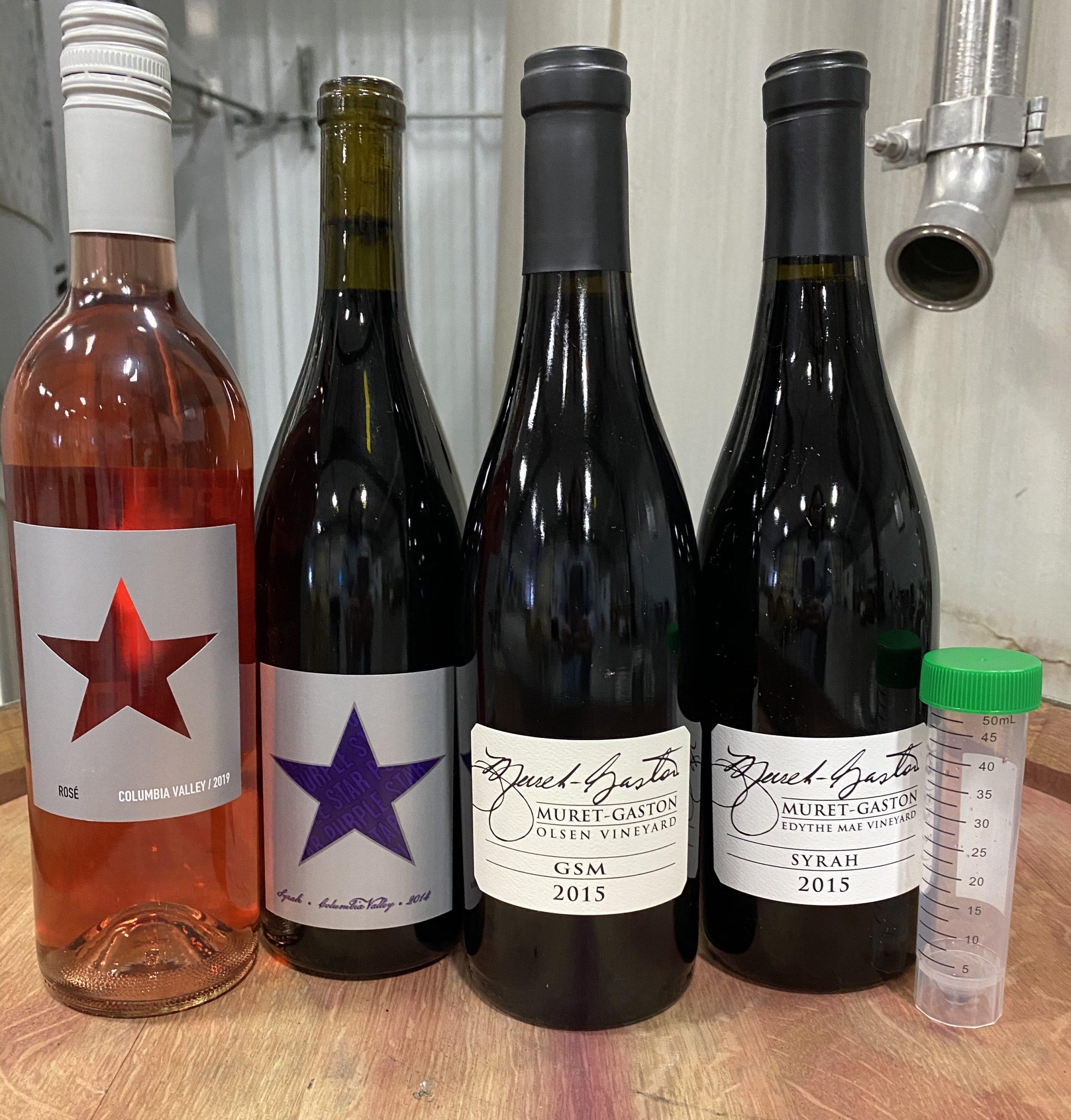 Syrah Saturday line up scaled - Syrah Saturday To Go Tasting with Purple Star