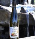 wild goose vineyards mystic river vineyard gewurztraminer 2019 bottle 120x134 - Wild Goose Vineyards in British Columbia tops Cascadia wine judging again