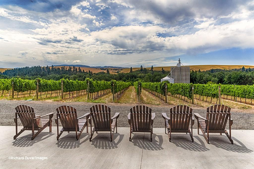 aluve winery menozzi vineyard richard duval images - USA Today readers vote Walla Walla Valley as America's Best Wine Region