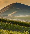 candy mountain north slope richard duval images feature 1 120x134 - Sweet 16th AVA in Washington belongs to Candy Mountain
