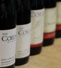IMG 1356 scaled c6RWFG.tmp  120x134 - November Special Tasting: Zeitoun Vineyard Retrospective