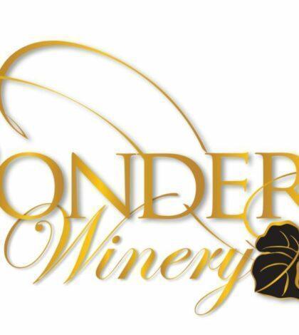pondera winery color logo 420x470 - Pondera Winery 2016 Discovery Vineyard Cabernet Sauvignon, Horse Heaven Hills $55