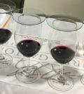 wine tasting 120x134 - Muret-Gaston Library Wine Tasting