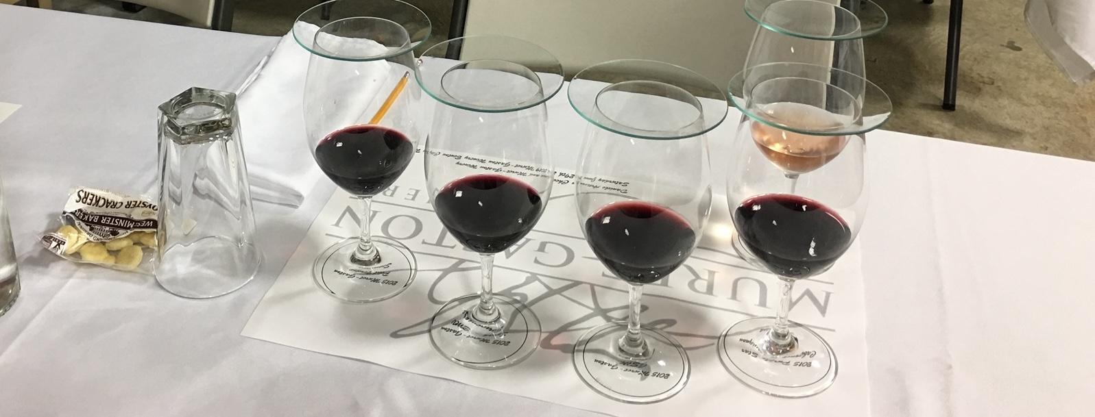 wine tasting - Muret-Gaston Library Wine Tasting