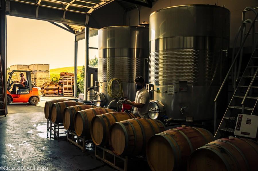 canvasback joe czarny forklift connor mccaw barrels - VineLines Dispatch: Harvest of Walla Walla Valley