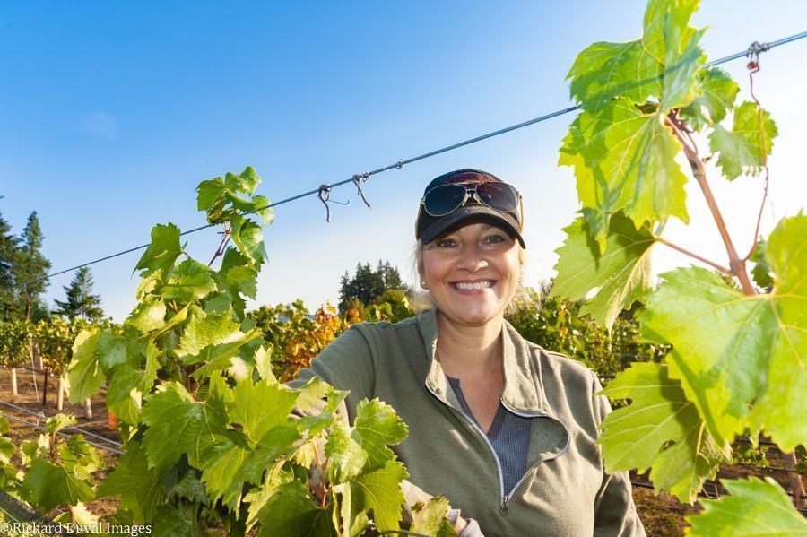 jill house stave stone wine estates vines 10 07 20 6645 richard duval images - VineLines Dispatch: A Gorgeous look at harvest
