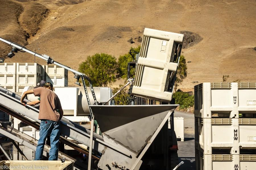 maryhill winery crush pad 10 09 20 7302 richard duval images - VineLines Dispatch: A Gorgeous look at harvest