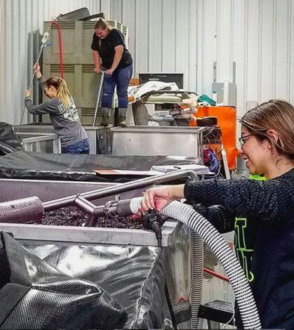 women winemakers feature 420x470 - New Alliance of Women in Washington Wine already stands at 200 strong